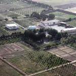 AFGHANISTAN – GUERRA ALLA COLTIVAZIONE DELL'OPPIO FAVORENDO COLTURE AGRICOLE MODERNE