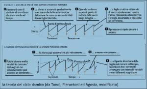 La teoria del ciclo sismico
