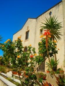 Fiori del Convento dei Cappuccini_Monastero del Terzo Millennio a Mesagne